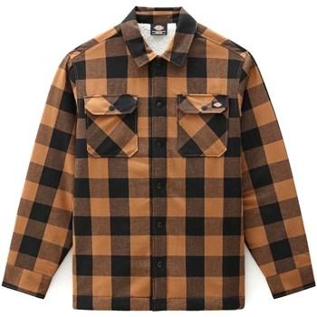 Textiel Heren Overhemden lange mouwen Dickies DK0A4XGRBD01 Bruin