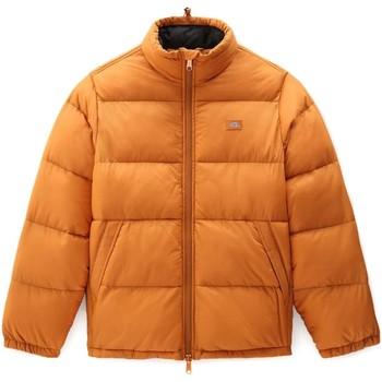 Textiel Heren Dons gevoerde jassen Dickies DK0A4XP2B831 Oranje
