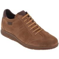 Schoenen Heren Lage sneakers Casual Shoes Zapatos sneakers con cordones de piel by Casual Marron