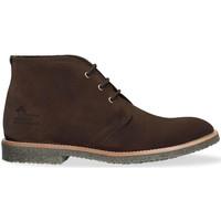 Schoenen Heren Laarzen Panama Jack GAEL C22 Brown