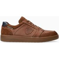 Schoenen Heren Sneakers Mephisto HUGH Brown