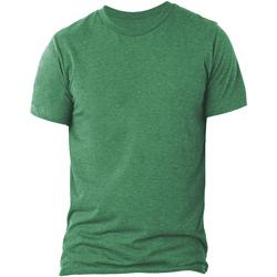 Textiel Heren T-shirts korte mouwen Bella + Canvas CA3413 Groene Triblend