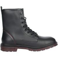Schoenen Dames Laarzen Wrangler WL12560A Black
