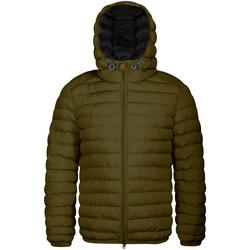 Textiel Heren Dons gevoerde jassen Invicta 4431806/U Groen