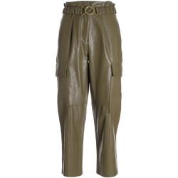 Textiel Dames Korte broeken Fracomina F321WV5001E40201 Groen