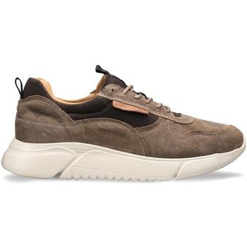 Schoenen Heren Lage sneakers Docksteps DSM000100 Bruin