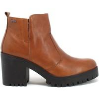 Schoenen Dames Enkellaarzen IgI&CO 8169233 Bruin