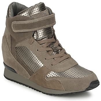 Schoenen Dames Hoge sneakers Ash DRUM Brown / Goud