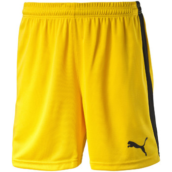 Textiel Heren Korte broeken / Bermuda's Puma Pitch Shorts Without Innerbrief