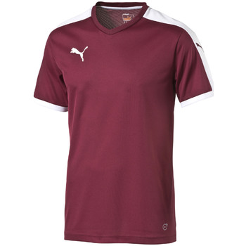 Textiel T-shirts korte mouwen Puma Pitch Shortsleeved Shirt