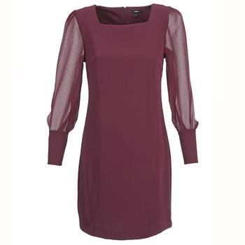 Textiel Dames Korte jurken Mexx JAJAVA Bordeaux