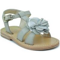 Schoenen Meisjes Sandalen / Open schoenen Oca Loca OCA LOCA VALENCIA AD FLOR GRIS