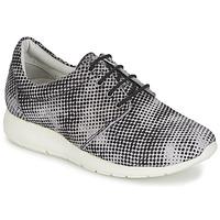Schoenen Dames Lage sneakers Maruti WING Brown