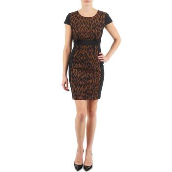 Textiel Dames Korte jurken Manoukian EMMA Zwart / Leopard