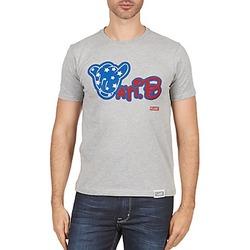 Textiel Heren T-shirts korte mouwen Wati B TSMIKUSA Grijs