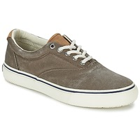 Schoenen Heren Lage sneakers Sperry Top-Sider STRIPER CVO Chocolade
