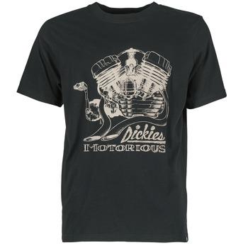 Textiel Heren T-shirts korte mouwen Dickies BRIDGEVILLE Zwart