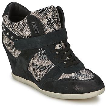 Schoenen Dames Hoge sneakers Ash BISOU Zwart / Python