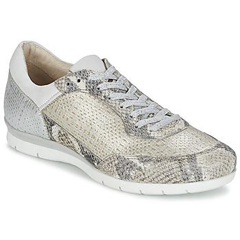 Schoenen Dames Lage sneakers Mjus FORCE Serpent / Zilver