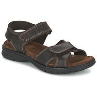 Schoenen Heren Sandalen / Open schoenen Panama Jack SANDERS Brown