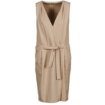 Textiel Dames Korte jurken Lola ROOT Beige