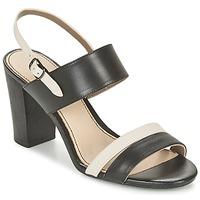 Schoenen Dames Sandalen / Open schoenen Hush puppies MOLLY MALIA Zwart