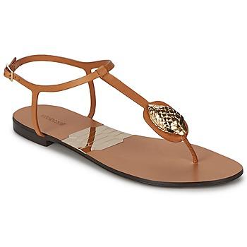 Schoenen Dames Slippers Roberto Cavalli XPX243-PZ220 Brown