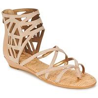 Schoenen Dames Sandalen / Open schoenen Sam Edelman DANA Moka / Taupe