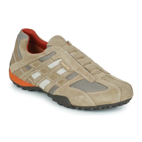 Schoenen Heren Lage sneakers Geox SNAKE Beige