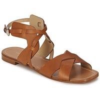 Schoenen Dames Sandalen / Open schoenen Etro 3947 Brown