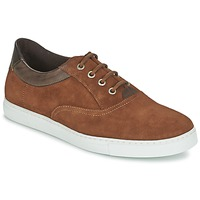 Schoenen Heren Lage sneakers Casual Attitude DIMO Brown