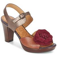 Schoenen Dames Sandalen / Open schoenen Chie Mihara JELIO Bordeaux