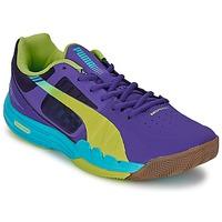Schoenen Heren Indoor Puma EVOSPEED INDOOR 3.3 Violet / Geel / Blauw
