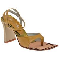 Schoenen Dames Slippers Nci  Brown
