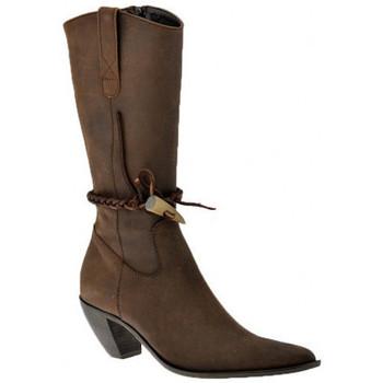 Schoenen Dames Enkellaarzen Nci  Brown