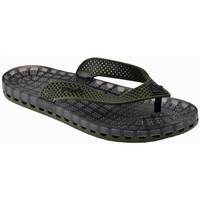 Schoenen Heren Slippers Sensi  Zwart