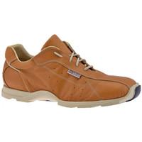 Schoenen Heren Hoge sneakers Docksteps  Beige