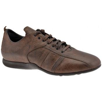 Schoenen Heren Hoge sneakers Docksteps  Brown