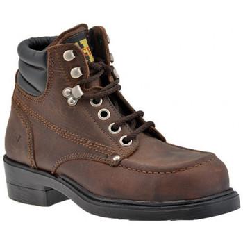 Schoenen Heren Laarzen Stone Haven  Brown