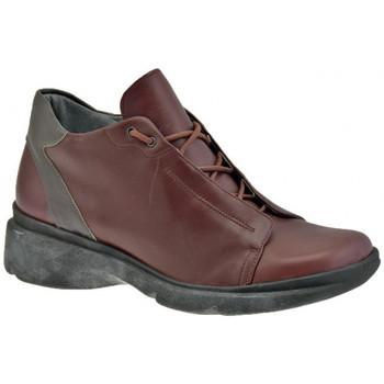 Schoenen Heren Hoge sneakers Tks  Brown