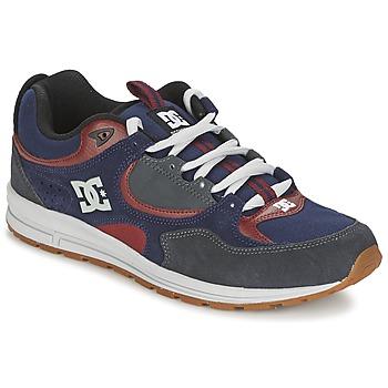 Schoenen Heren Skateschoenen DC Shoes KALIS LITE Marine / Grijs