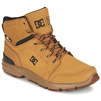 Schoenen Heren Laarzen DC Shoes TORSTEIN Graan / Zwart