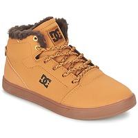 Schoenen Kinderen Hoge sneakers DC Shoes CRISIS HIGH WNT B SHOE WD4 Graan / Chocolade