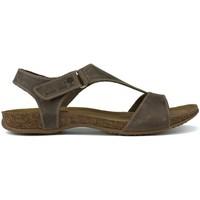 Schoenen Dames Sandalen / Open schoenen Interbios S  ANATÓMICAS PARDO