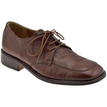 Schoenen Heren Klassiek Bocci 1926  Brown