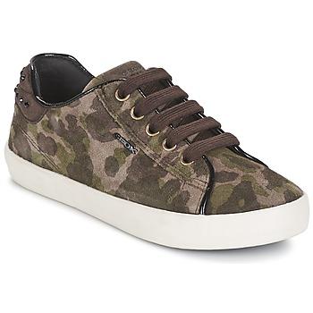 Schoenen Meisjes Lage sneakers Geox KIWI GIRL Groen