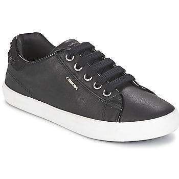 Schoenen Meisjes Lage sneakers Geox KIWI GIRL Zwart