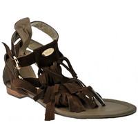 Schoenen Dames Sandalen / Open schoenen Swish  Brown