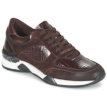 Schoenen Dames Lage sneakers Dream in Green FARRICA Bordeaux