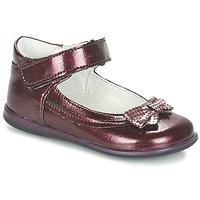 Schoenen Meisjes Ballerina's Citrouille et Compagnie FRIZZY Bordeaux